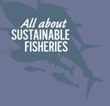 Tout sur la pêche durable