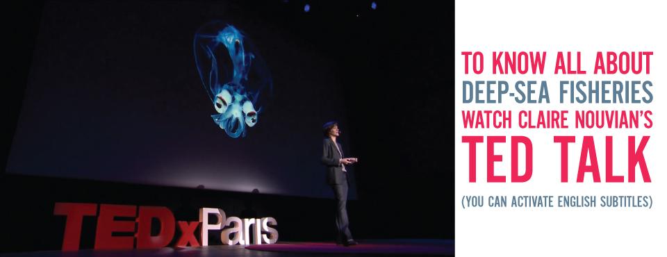 Bandeau-TEDx-CN-GB2