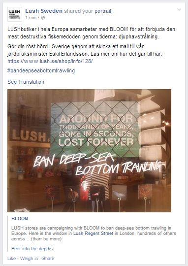 fb lush suède