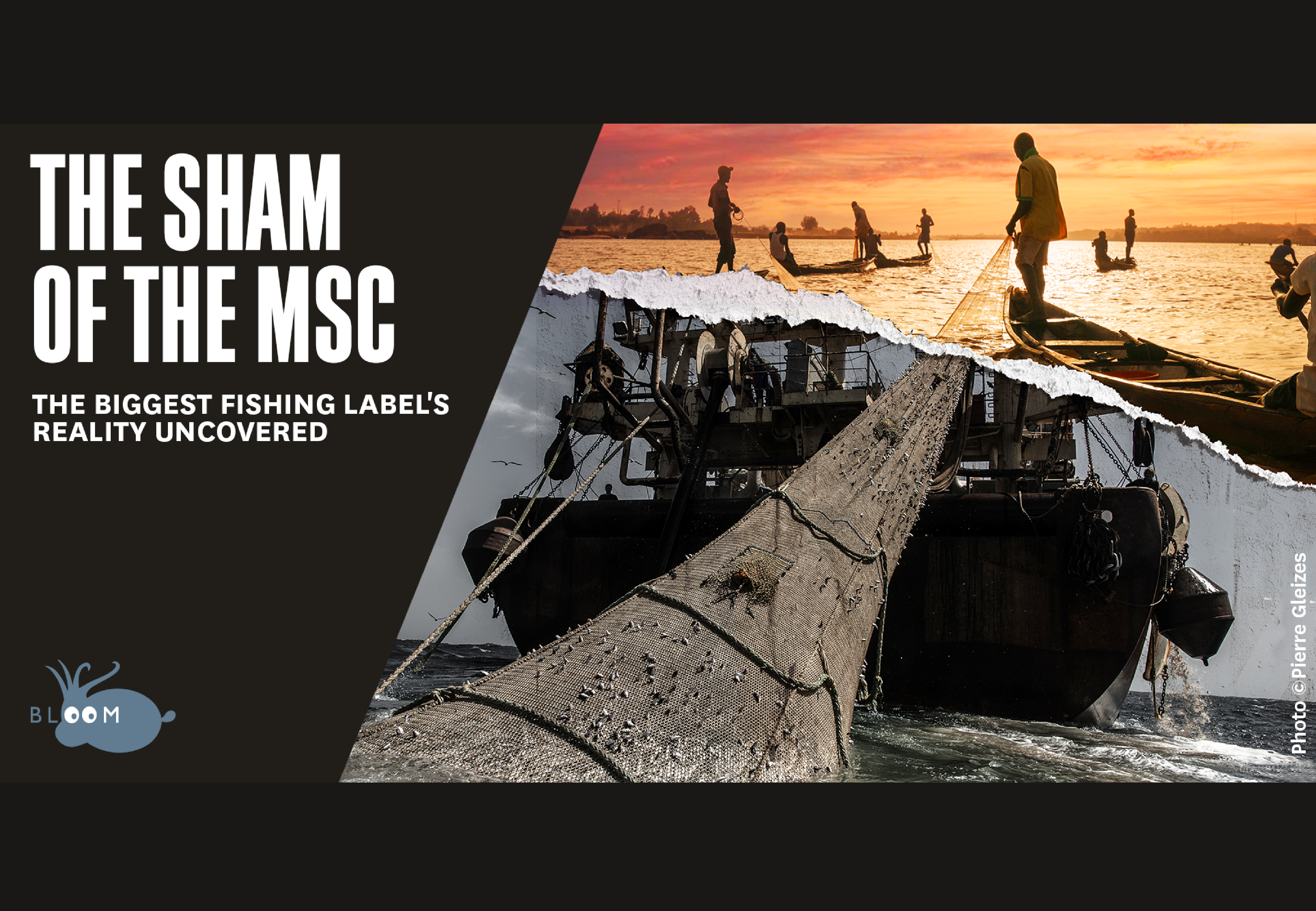 BLOOM's scientific study on the sham of the MSC label