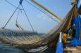 A Dutch pulse trawler in the North Sea