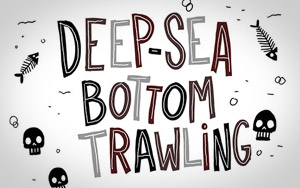 Pénélope Bagieu's cartoon on deep-sea bottom trawling