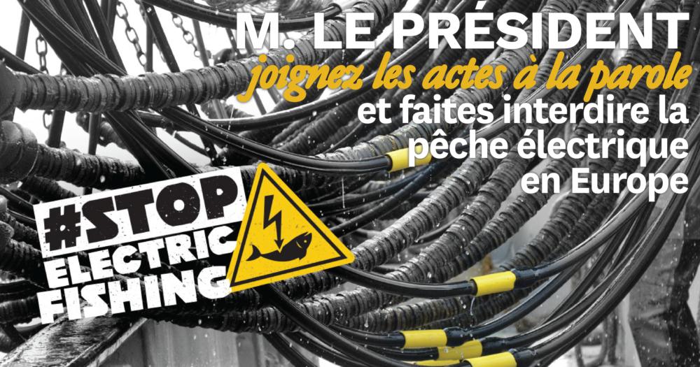 visuel pétition Macron contre pêche électrique